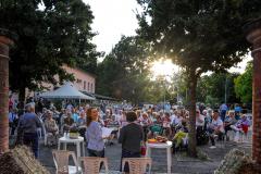 Novi di Rovereto (MO), domenica 24 giugno 2018, I declamatori di Zirudelle (Claudia, Giorgio e Sara)
