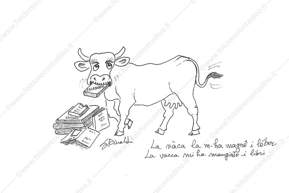 La vaca la gh-ha magnê i léber