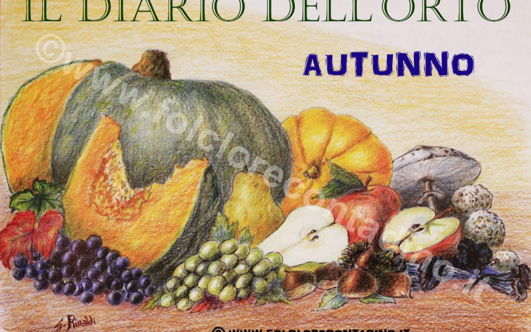 Diario dell'orto: Novembre