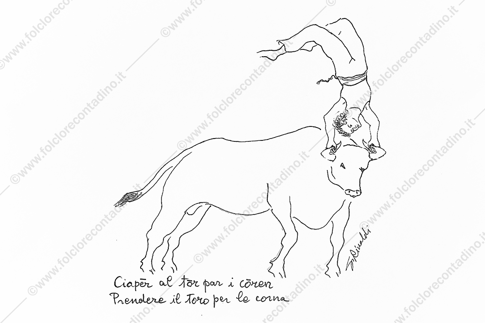 Ciapēr al tōr par i cōren (prendere il toro per le corna)