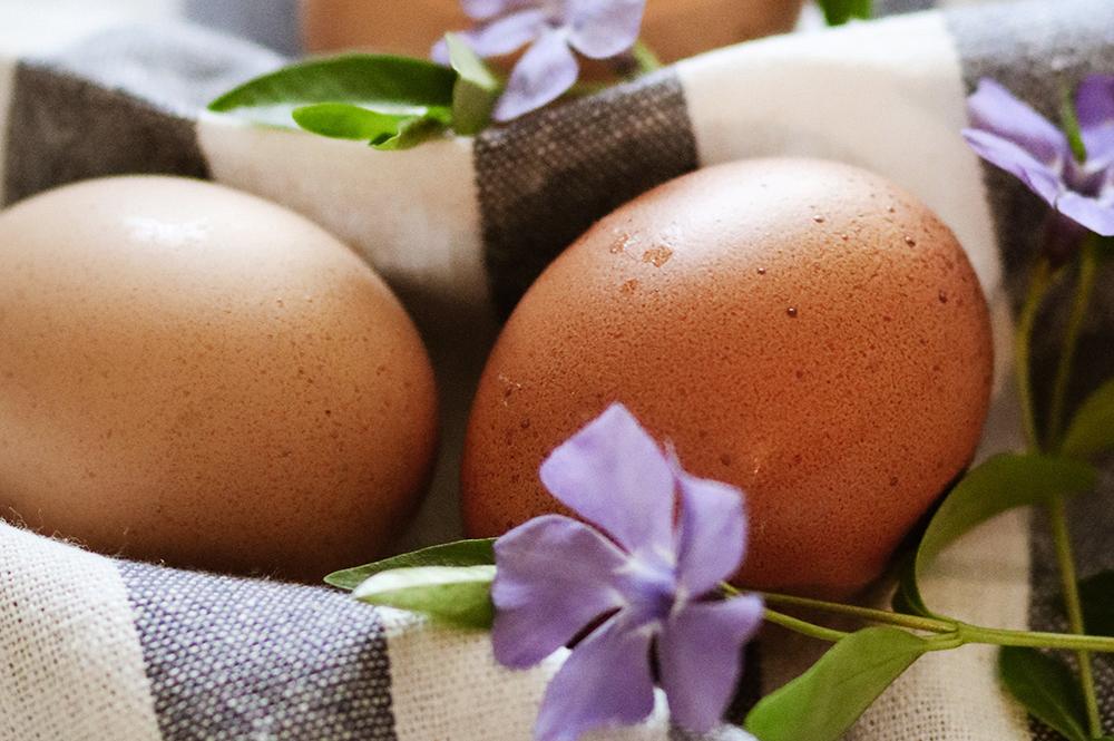 La bandiziòn di òv (La benedizione delle uova)