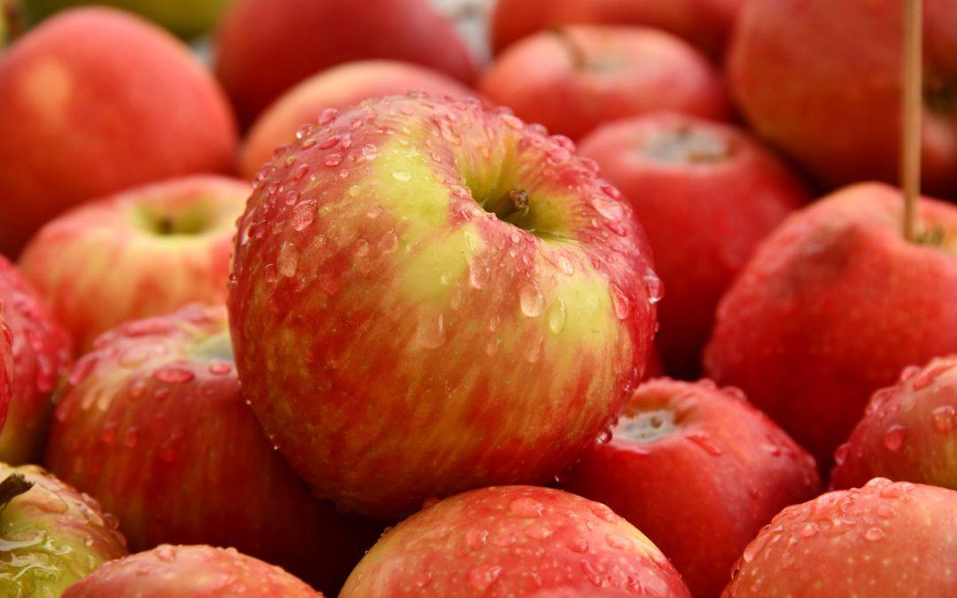 Secondi in Europa per le mele ma il clima non aiuta